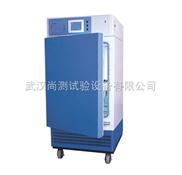 LHH-250SD-药品稳定性试验箱