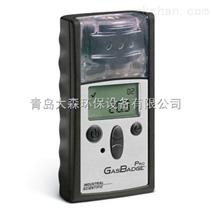 GB Pro便携单一气体检测仪