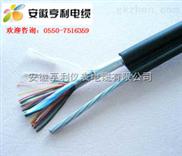 ZA-DJYPVP22-计算机电缆单价ZA-DJYPVP22电缆(老窖)