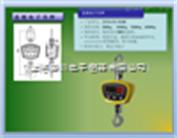 0CS-XC-GSE上海电子吊秤,电子吊秤200kg