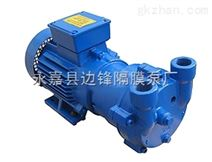 2BV2液环真空泵