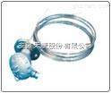 多点隔爆热电阻WZP-440D6