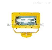 海洋王BFC8100(外场)强光防爆泛光灯厂家价格