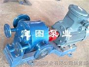 BW-58/0.28-解析保温齿轮泵的保养方法--泊头宝图