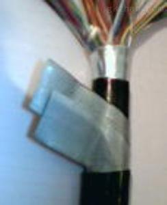 多芯绞合信号电缆屏蔽通讯线