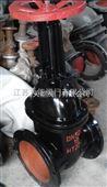 铸铁明杆闸阀Z41W-10