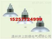 BAD84防爆免维护节能LED灯防爆投光(泛光)灯不锈钢防爆LED灯