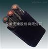 YVFB电缆3*95+1*25mm2