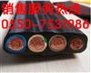 002#天康YFFRBP电缆061000