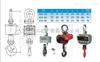 OCS-XC-DBAE码头专用吊秤,港口电子吊秤,行车电子吊磅